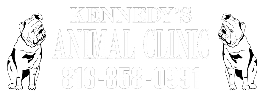 Kennedy's Animal Clinic